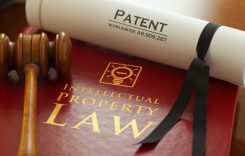 Inspector. Graphic logo is my artwork. Patent Number is fictitious. Thanks.     Red leather Intellectual Property Law book with with gold embossed type and iconic light bulb, ideas icon logo, with a judges gavel and a generic A4 Patent document.